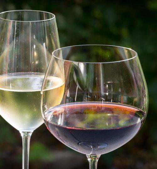 Calici per vini rossi e bianchi fermi
