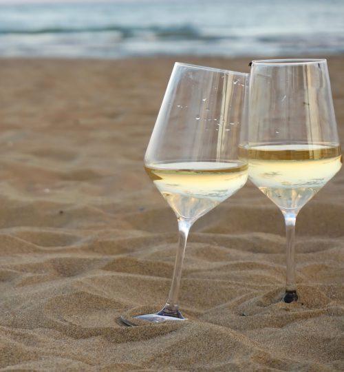Calici per vini bianchi o rossi importanti